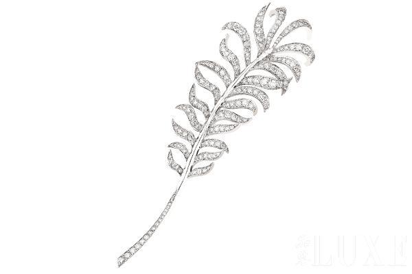 手绘珍珠设计图